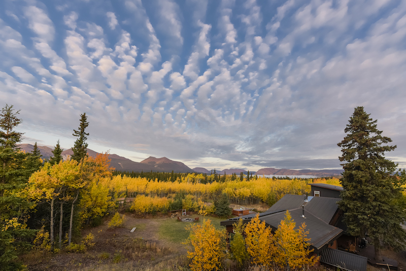 Yukon Backcountry Mountain Biking