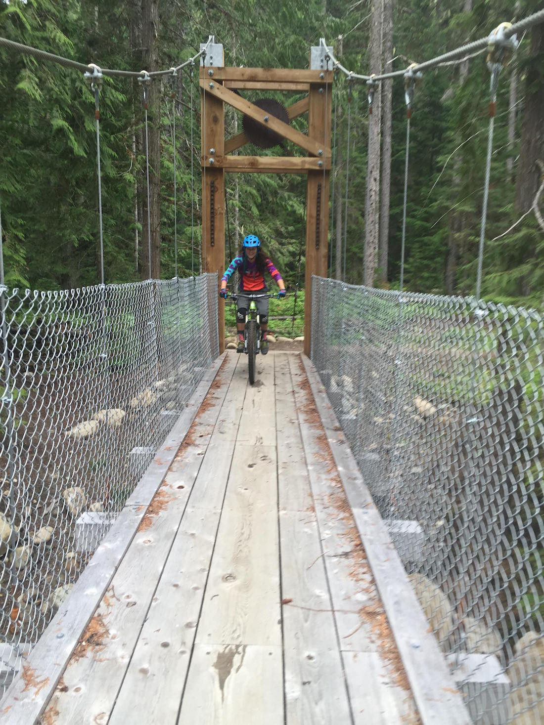 valemount bridge